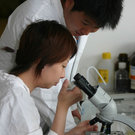 Practical course in the laboratory