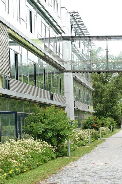 Ingolstadt Study In Bavaria